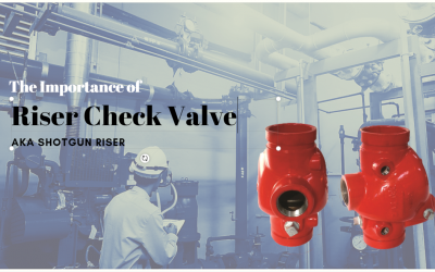 What Are Riser Check Valves